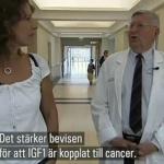 Socker och stärkelse göder cancer