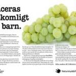 Vindruvor överskred referensdosen för barn med 900%